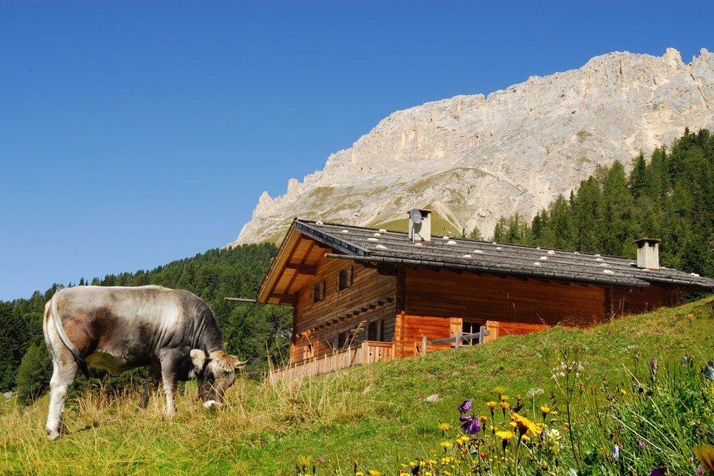 Almhüttenurlaub Südtirol – Wanderparadies Latemar/ Dolomiten